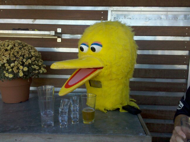 big bird is a drunk